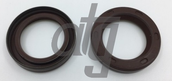 Fuel pump seal<br><br>25.00*36.00/7.30<br><br>