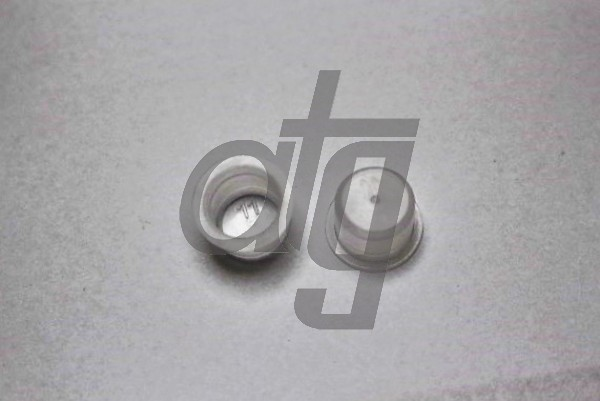 Plastic plug (without screw)<br><br>11/11.5<br><br>