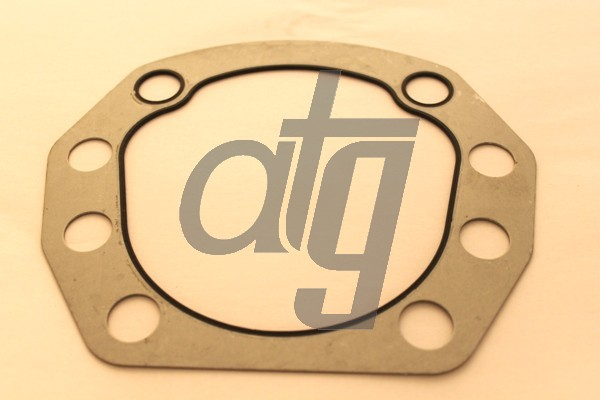 Steering box gasket<br><br>TAS 85<br><br>